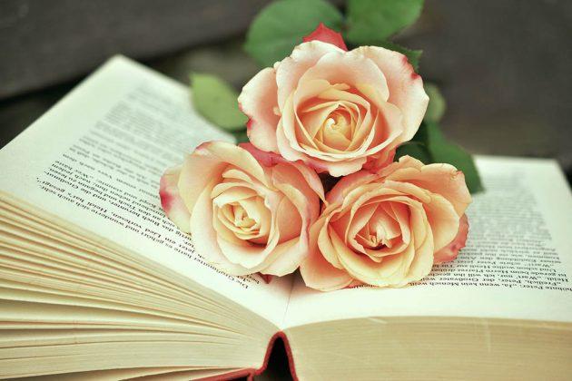 Αχ βιβλίο, αγάπη μου!